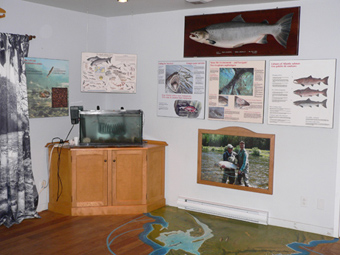 The interpretation center features a large map showing the Atlantic salmon's migration paths.
