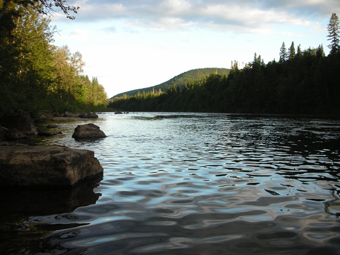 A picture of the Cascapedia River at dusk.
